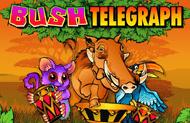 Игровой аппарат Bush Telegraph