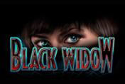 Черная Вдова от Вулкан Россия